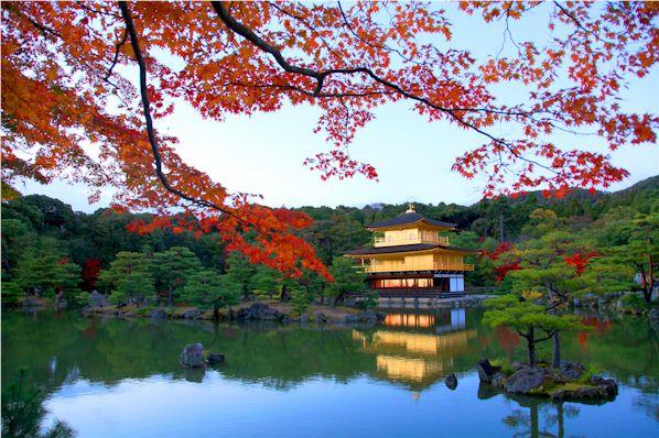 京都の戸籍もコンピューター化されています